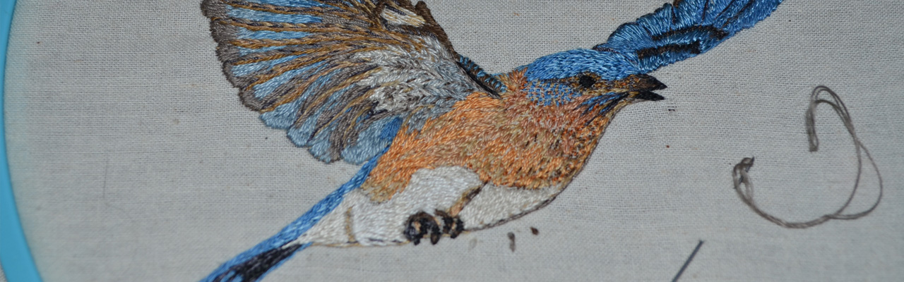 Eastern Blue Bird embroidered
