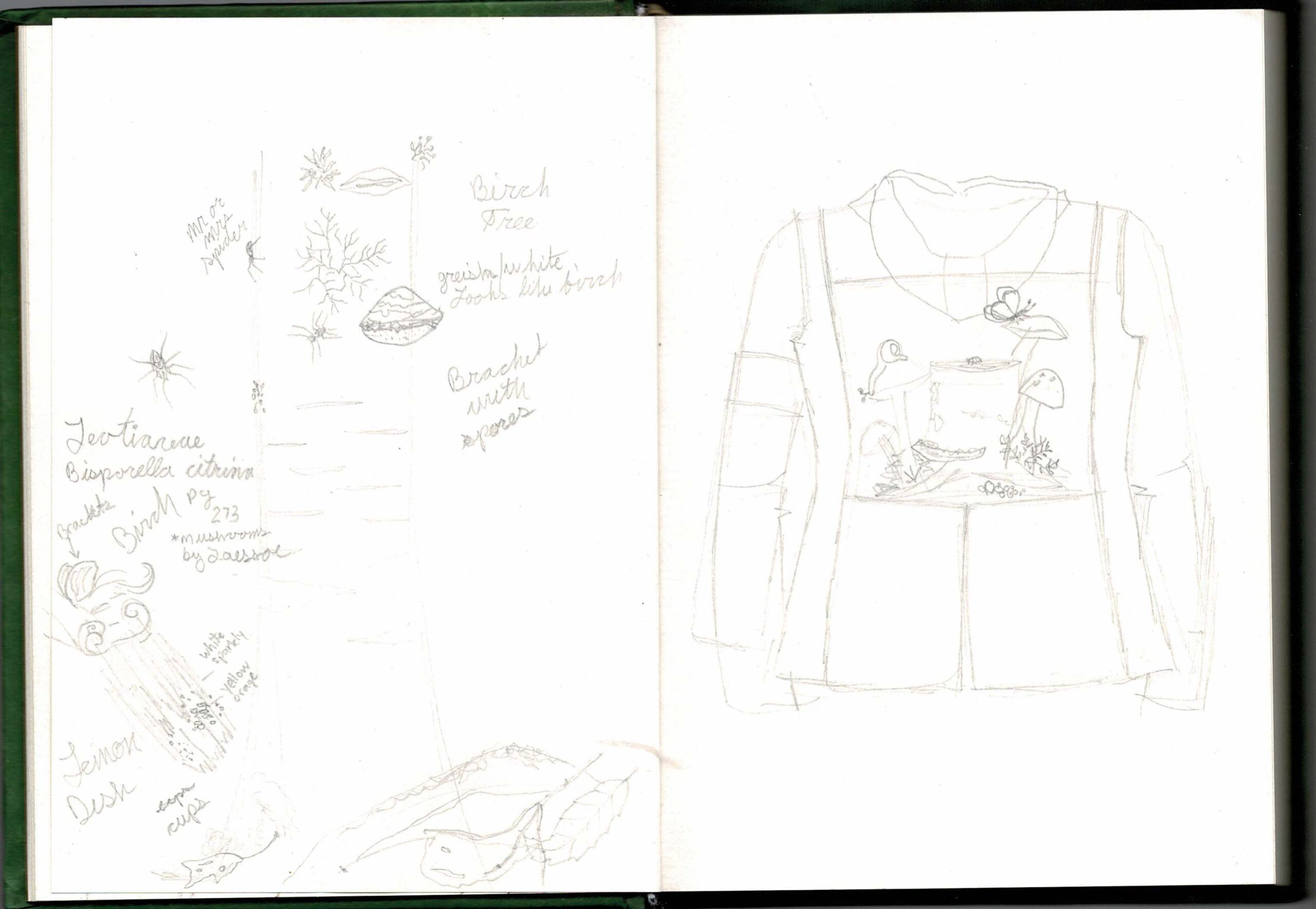 Naturalist Sketch Book